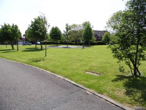 Ashbrook Close Green